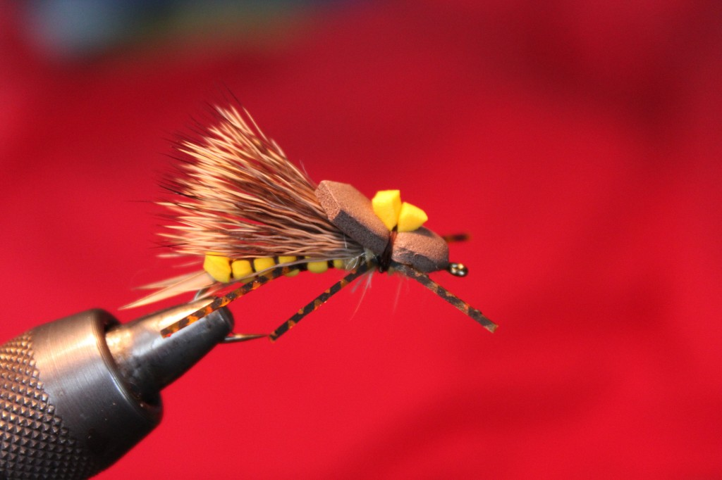 Skwala Fly Pattern