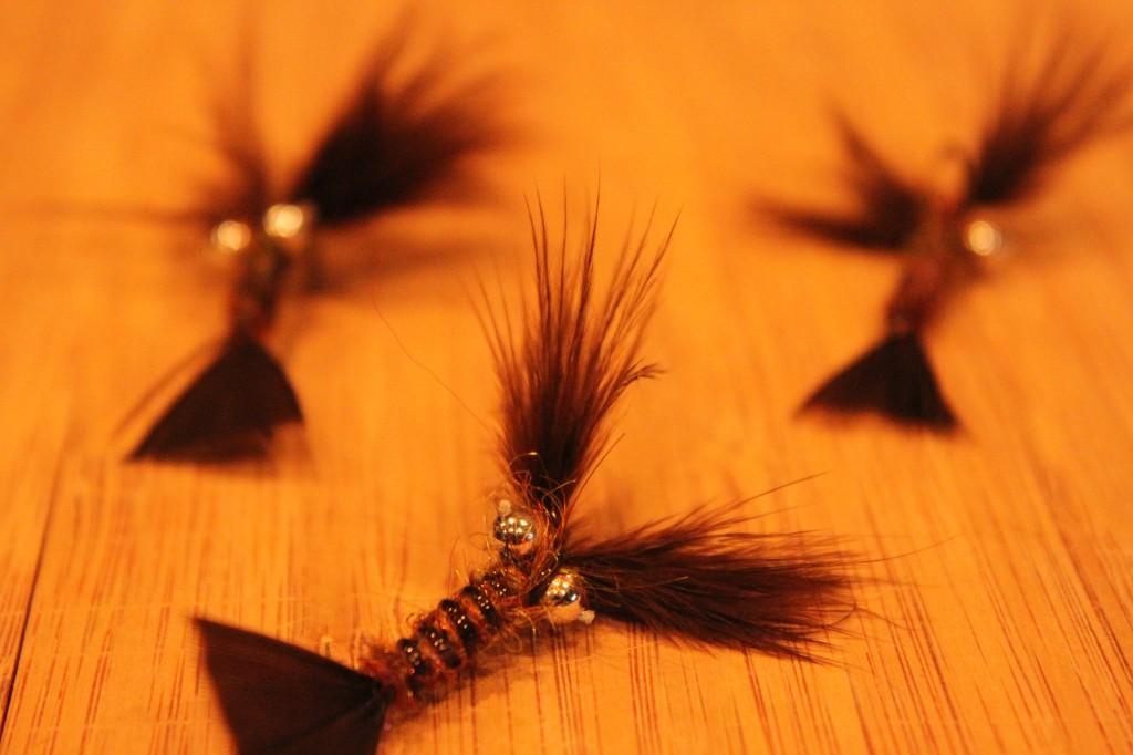 Crayfish Pattern