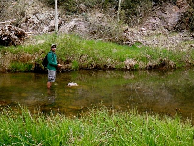 Arizona fly fishing extras arizona wanderingsarizona for Arizona fly fishing