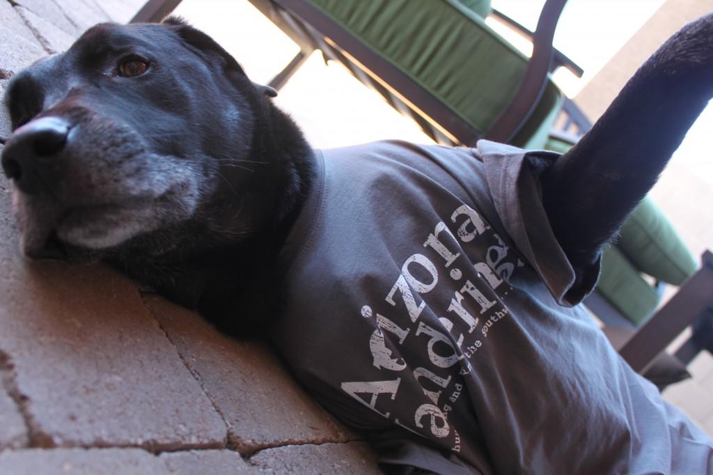 Get your Arizona Wanderings T-shirt