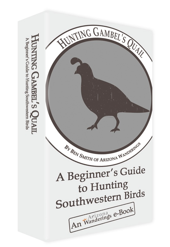 Hunting Gambel's Quail: A Beginner's Guide to Hunting Gambel's Quail
