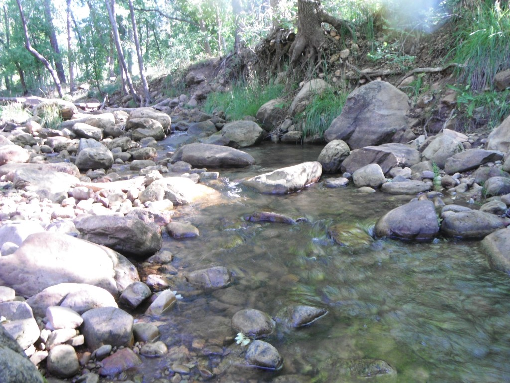 Rim Creek