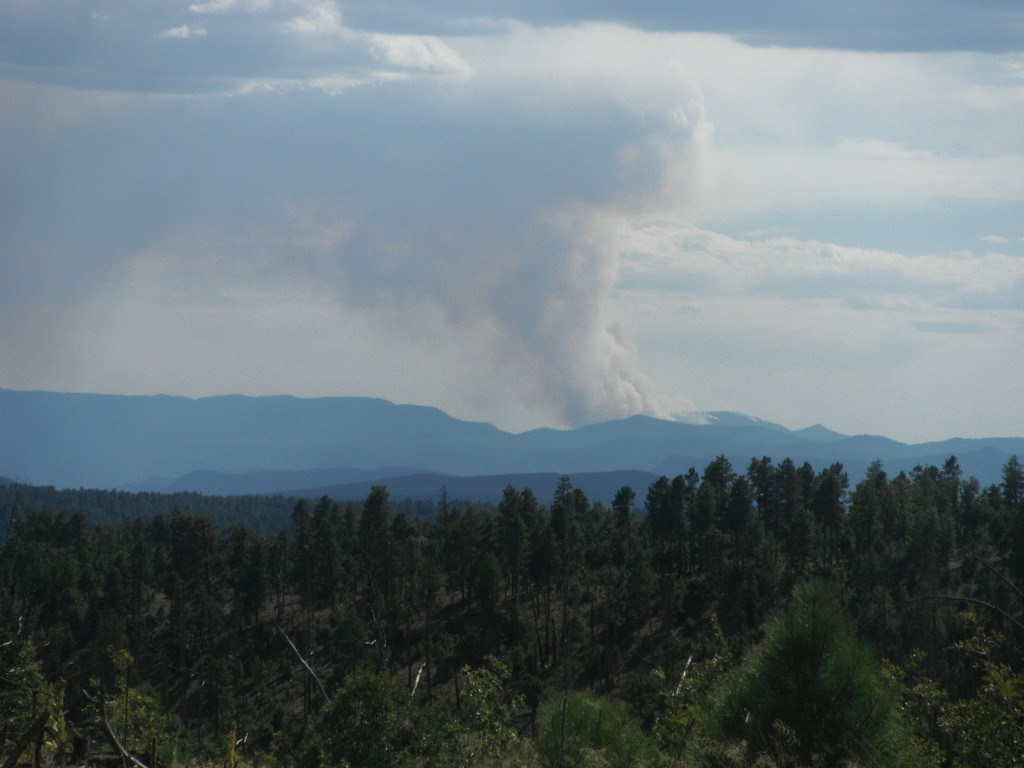 The Tanner Fire