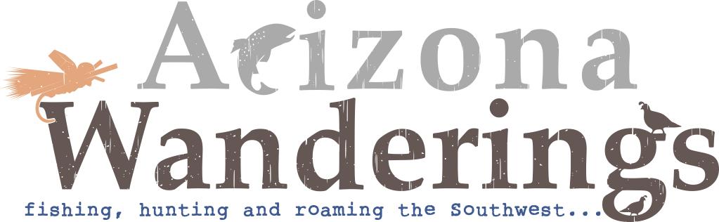Arizona Wanderings