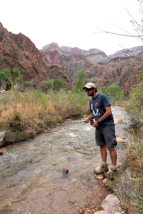 Fly fishing arizona bright angel creek arizona for Fishing in az