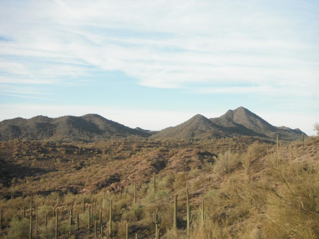 Arizona Quail Country