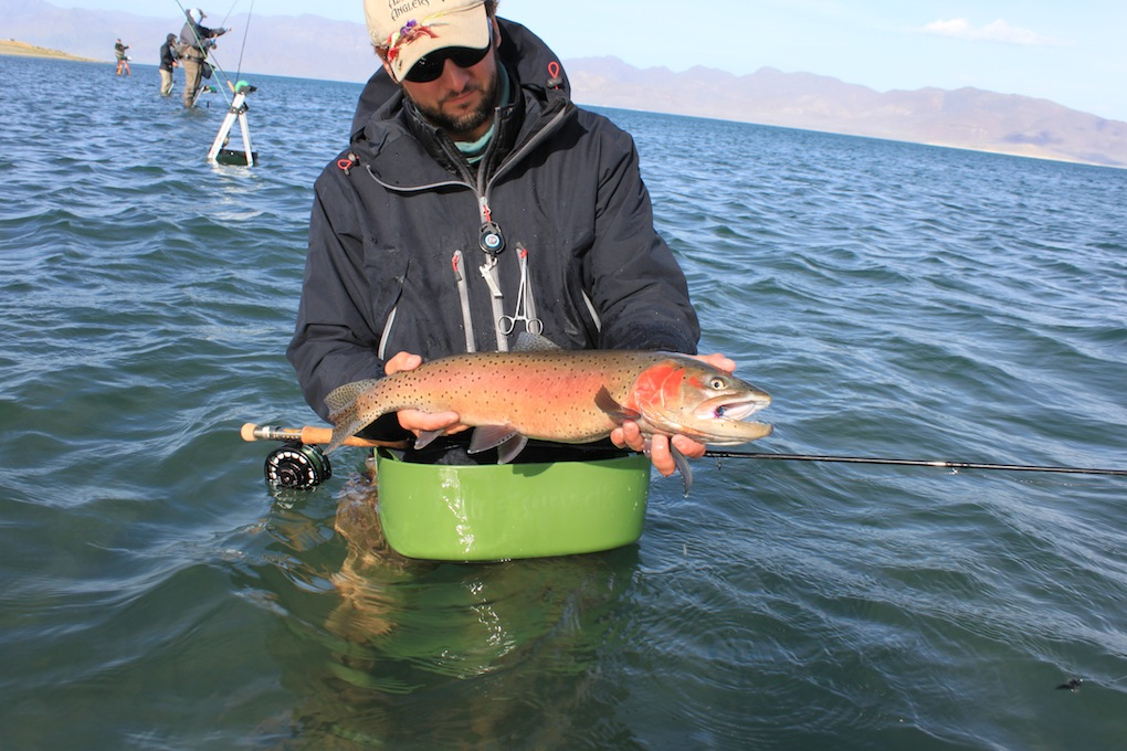 Fly fishing pyramid lake day 3 arizona for Fishing lakes in arizona