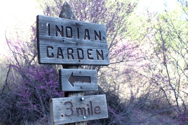 47 - Indian Garden Sign