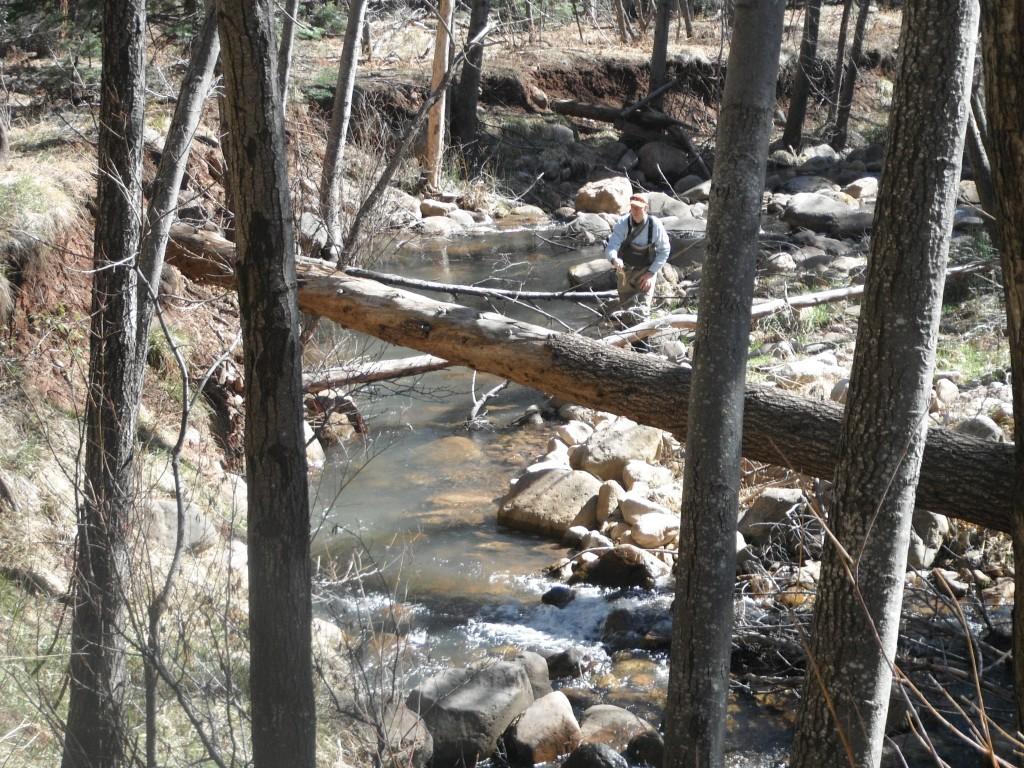 Arizona Creek Fishing