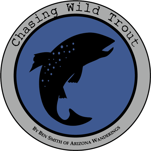 Chasing Wild Trout E-book