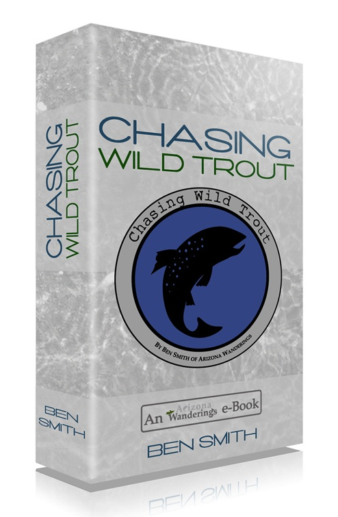 Fly Fishing Small Streams E-book