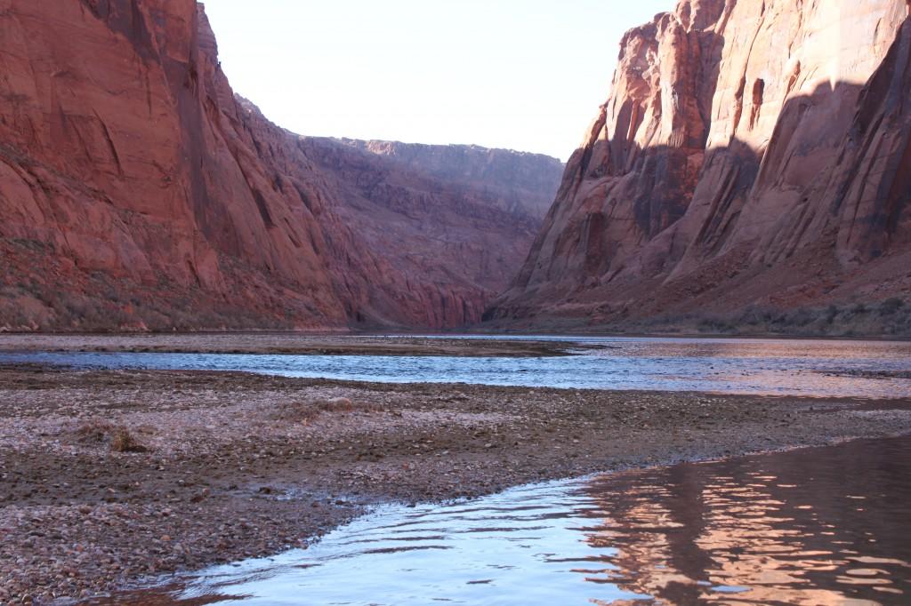 Arizona fly fishing lees ferry arizona for Fishing in az