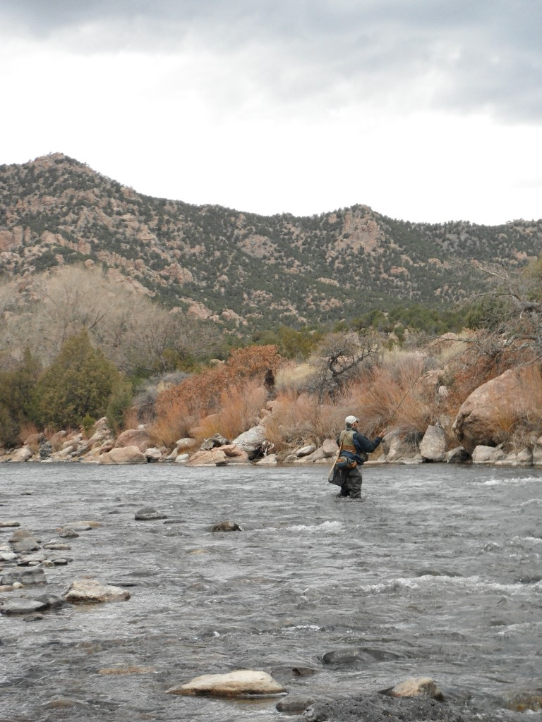 Colorado fly fishing the arkansas river arizona for Colorado river fly fishing
