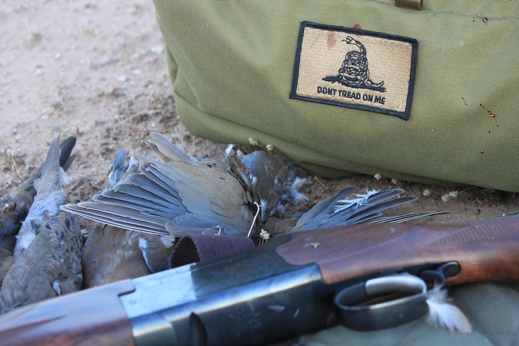 Arizona Dove Hunting