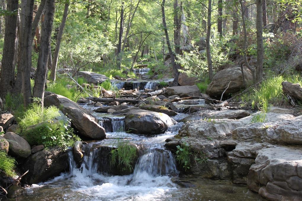 Arizona Pocket Water