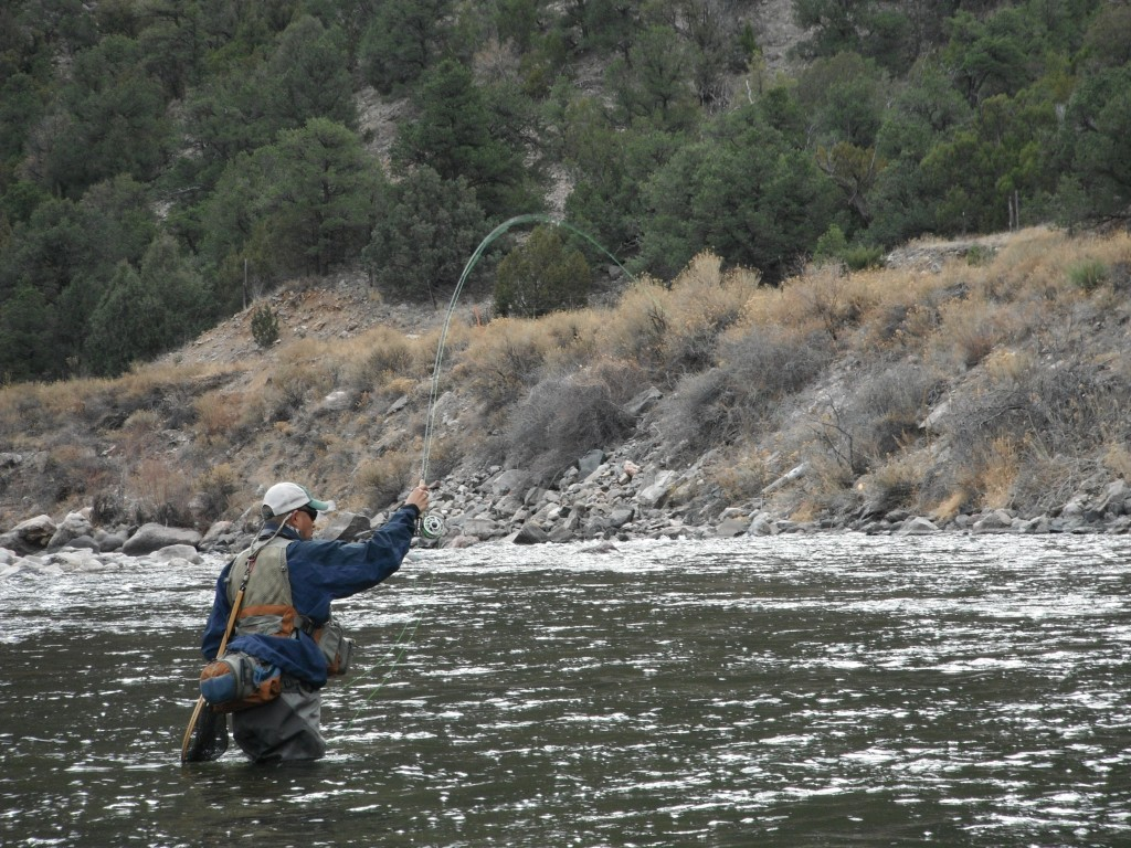 colorado fly fishing the arkansas river arizona