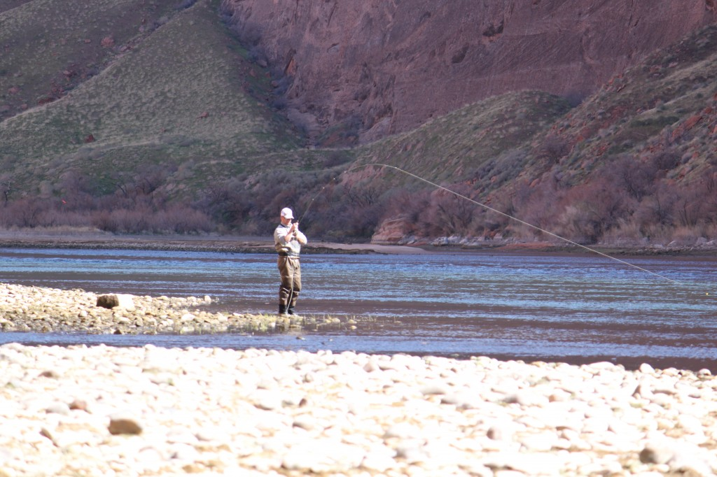 Arizona Fly Fishing