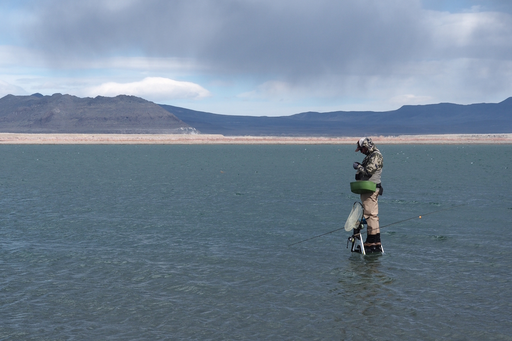 Pyramid Lake Fly Fishing