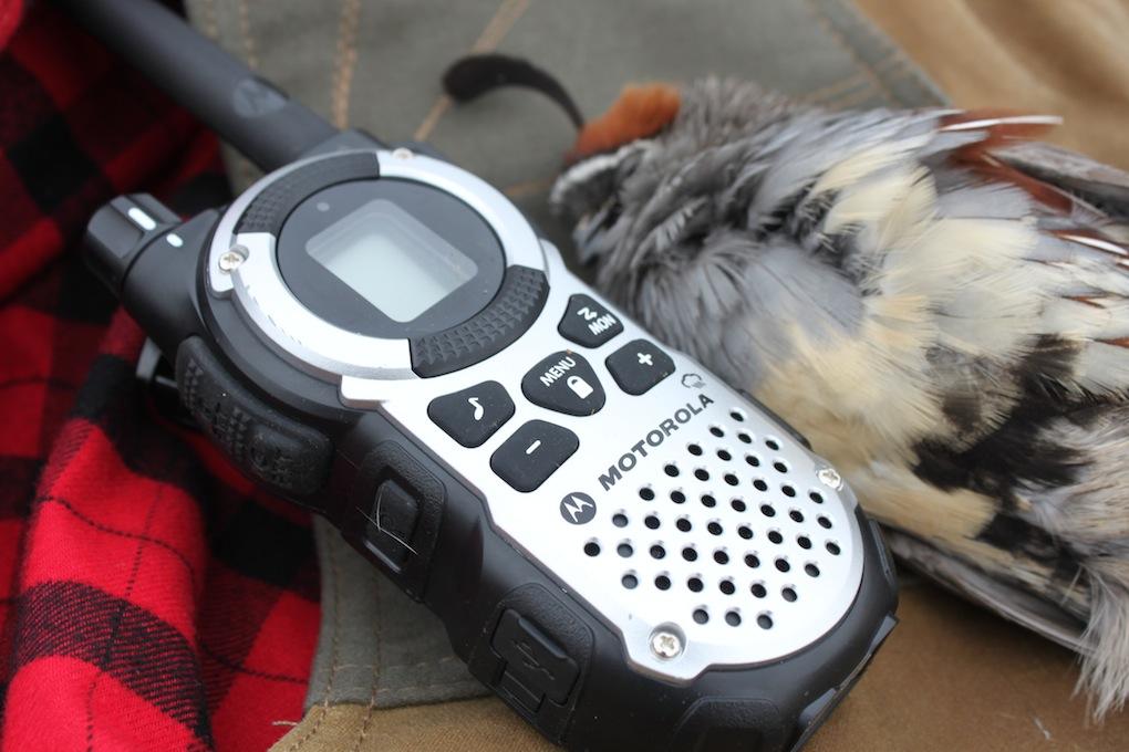 Motorola Talkbouts