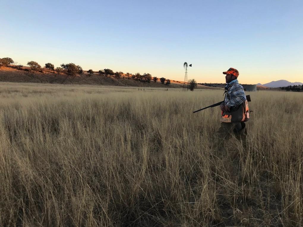 Mearns Quail Hunting