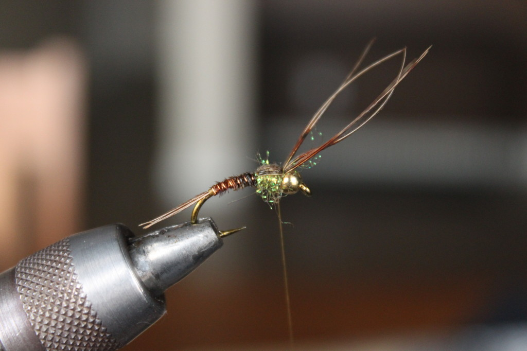 Pheasant Tail Nymph 10