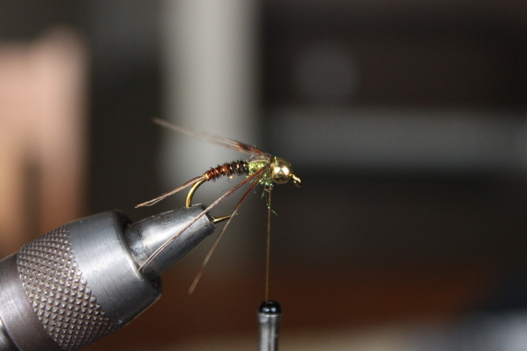 Pheasant Tail Nymph 11