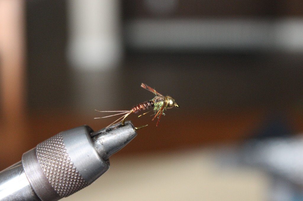 Pheasant Tail Nymph 12