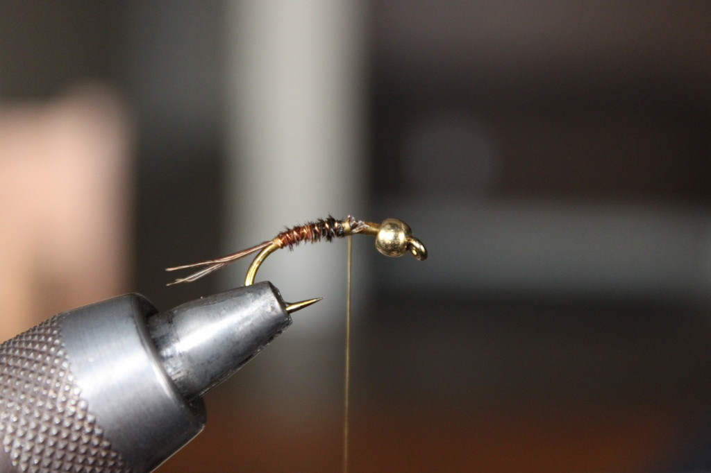 Pheasant Tail Nymph 6