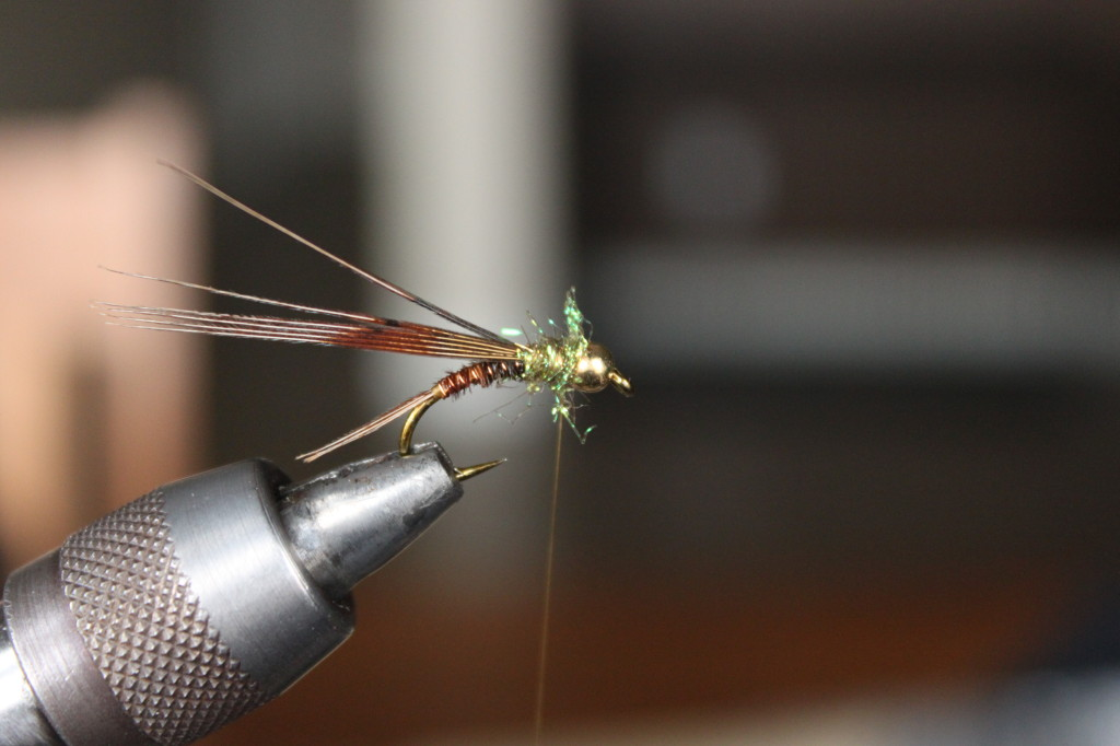 Pheasant Tail Nymph 9