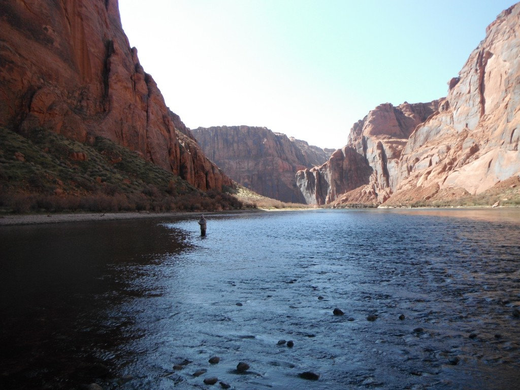 Arizona fly fishing lees ferry part 1 arizona for Colorado river fly fishing