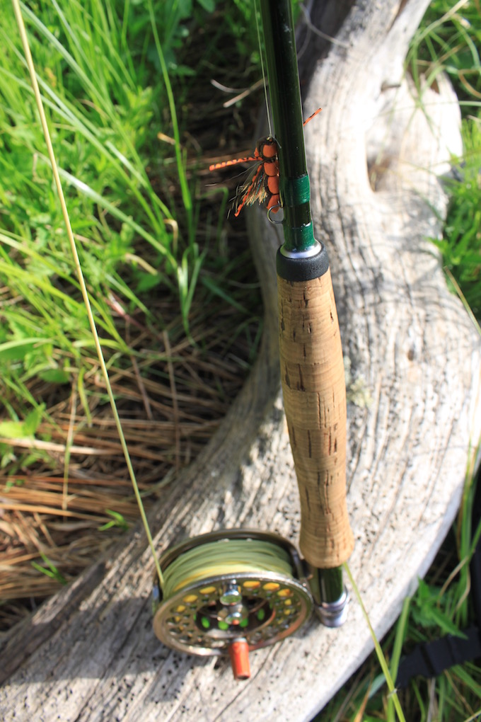 Fly Rod and Hopper pattern