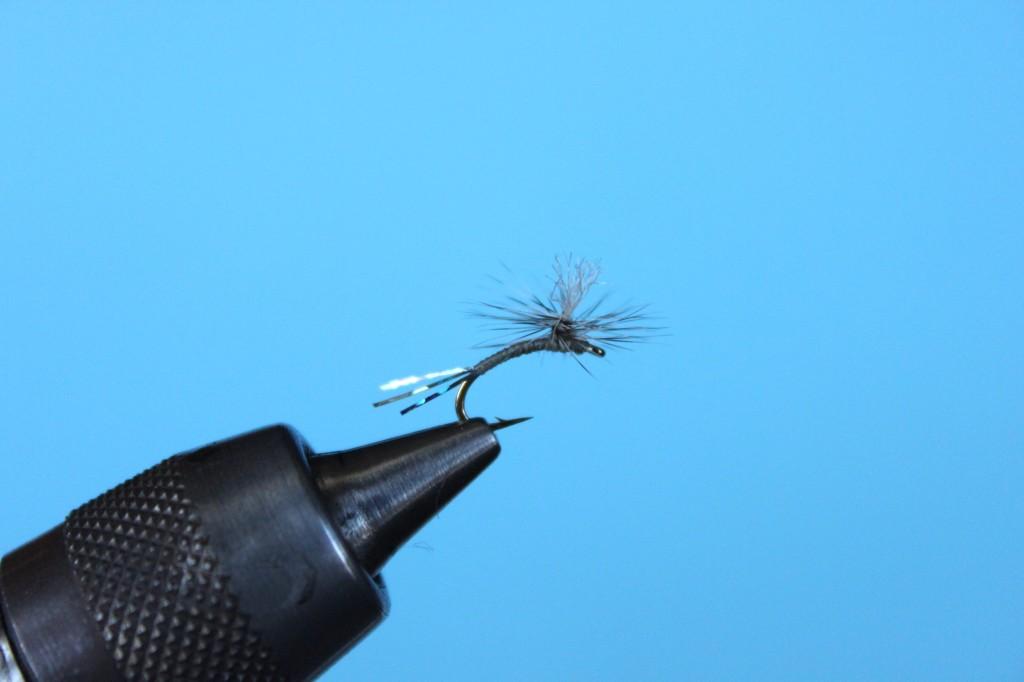 Sparklebutt Parachute Final