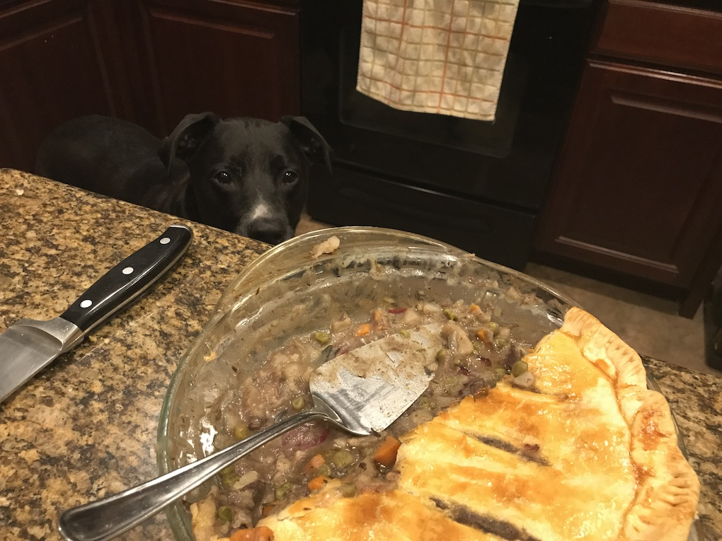Dove Pot Pie
